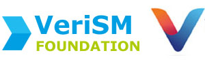 VeriSM Foundation Training